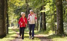 Achtsam gegenueber sich selbst Lebenserwartung und Leistungsfaehigkeit optimieren